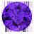 Amethyst (3)