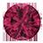 Pink-Sapphire (3)